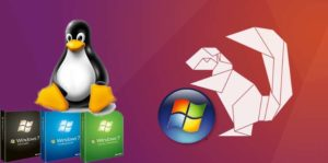 Ubuntu with Windows