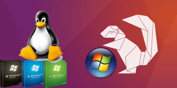 How to install Ubuntu with Windows